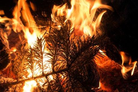 brandursache weihnachtsbaum adventskranz. Black Bedroom Furniture Sets. Home Design Ideas